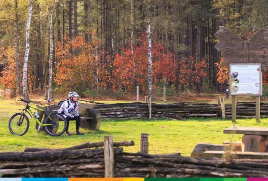 Thematische fietsroutes Bosland