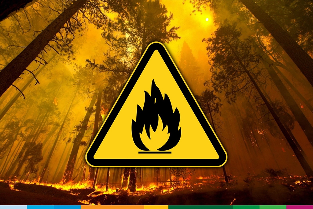 Brandgevaar Code Oranje.Code Oranje Brandgevaar In Bosland Bosland Het Grootste