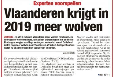 Vlaanderen krijgt in 2019 meer wolven