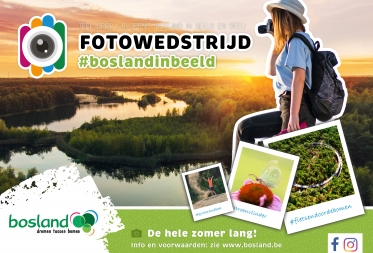 Nieuwe fotowedstrijd brengt de hele zomer lang #boslandinbeeld
