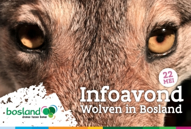 """Infoavond """"Wolven in Bosland"""""""