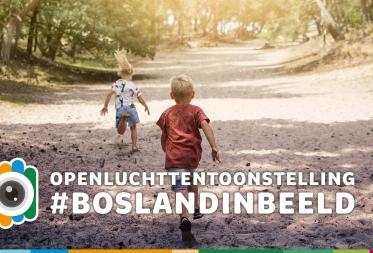 Openluchttentoontstelling Bosland in Beeld