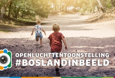 Openluchttentoonstelling Bosland in Beeld