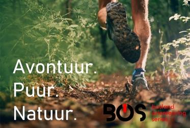 Bosland Orienteering Series - Kattenbos