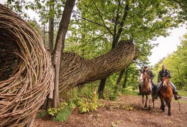 Paardrijden in en om het Pijnven