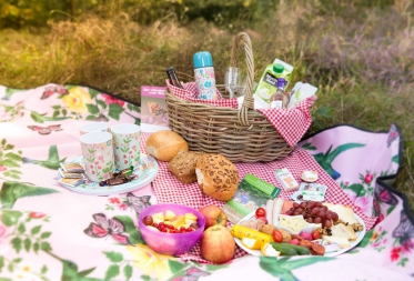 Picknick In den Brand