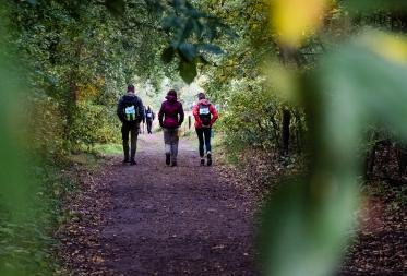 Bosland Trail - 100km