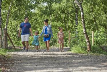 In 2017 meer dan 350.000 wandelaars in Bosland