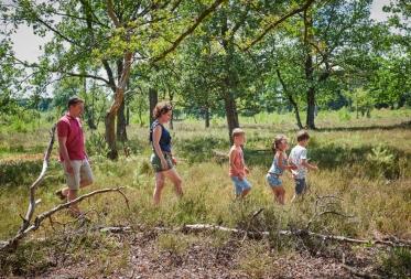 Meer dan 2 miljoen wandelaars kiezen in 2018 voor Limburg omwille van het aantrekkelijke landschap en de mooie natuur!