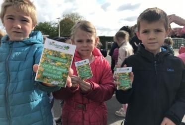 Bosland in de bloemen: 11.000 schoolkinderen ontvangen zaadjes voor vlinderbloemen