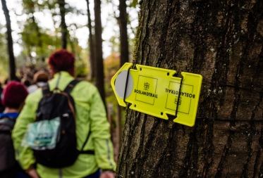 Bosland Trail 2021
