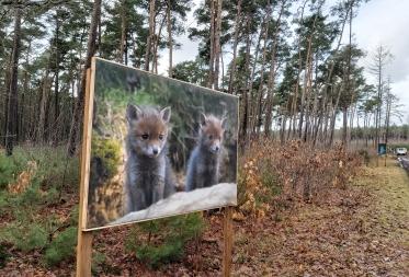 Fototentoonstelling Natuur en Landschappen in Hechtel-Eksel