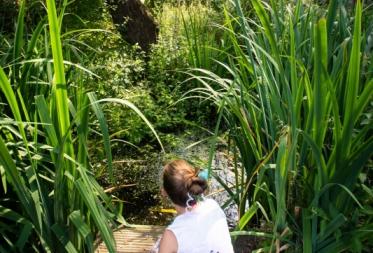 Op ontdekking in Bosland: Kriebeldiertjes zoeken!