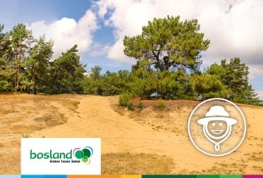 Op stap in Bosland: Duimen voor duinen
