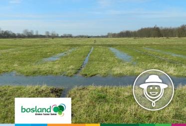 Op stap in Bosland: Effecten van de opwarming van de Aarde op de Grote Watering