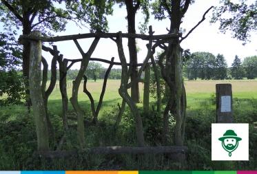 Op stap in Bosland: Het Kattenbos vroeger en nu