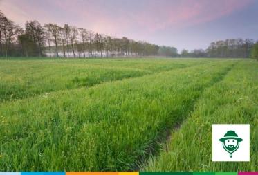 Op stap in Bosland: Klimaatopwarming, ver van mijn bed?
