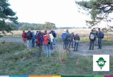 Op stap in Bosland: Marcheren in de Hechtelse heide