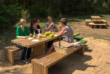 Eerste picknickbanken volgens eigen Bosland stijl