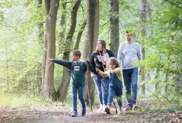 Vier (speur)tochten tussen de Bomen geven feestelijke zomertoets in Bosland!