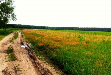 Natuurwandeling: zeldzame planten en dieren kansen geven