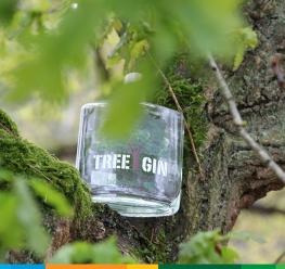 Tree Gin Bosland