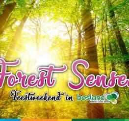 Welkom op Forest Senses in Bosland